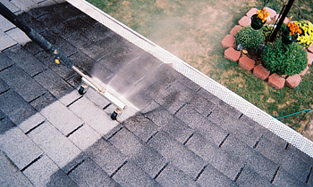 Roof Cleaning in Aurora CO Roof Cleaning Services in Aurora CO Roof Cleaning in CO Aurora Clean the roof in Aurora CO Roof Cleaner in Aurora CO Roof Cleaner in CO Aurora Quality Roof Cleaning in Aurora CO Quality Roof Cleaning in CO Aurora Professional Roof Cleaning in Aurora CO Professional Roof Cleaning in CO Aurora Roof Services in Aurora CO Roof Services in CO Aurora Roofing in Aurora CO Roofing in CO Aurora Clean the roof in Aurora CO Cheap Roof Cleaning in Aurora CO Cheap Roof Cleaning in CO Aurora Estimates on Roof Cleaning in Aurora CO Estimates in Roof Cleaning in CO Aurora Free Estimates in Roof Cleaning in Aurora CO Free Estimates in Roof Cleaning in CO Aurora